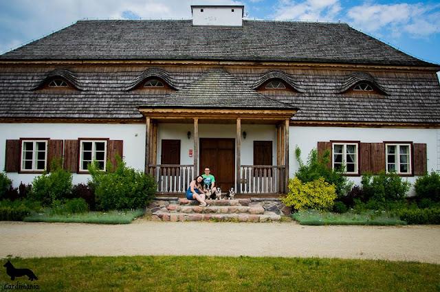 muzeum wsi mazowieckiej, podróże z psem, wakacje z psem