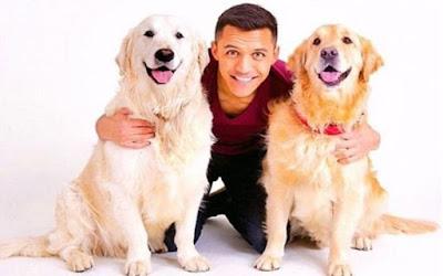 Dua Anjing Ini Punya 17 Ribu Follower di Instagram