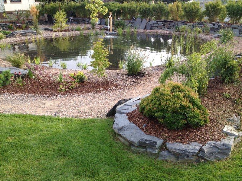 pflanzen am teich teich bepflanzen mehr als 70 ideen rohrkolben im teich vor und nachteile. Black Bedroom Furniture Sets. Home Design Ideas