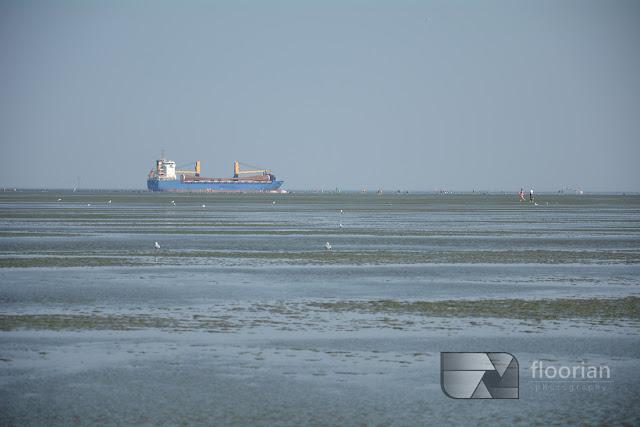 Przypływy i odpływy Morza Wattowego
