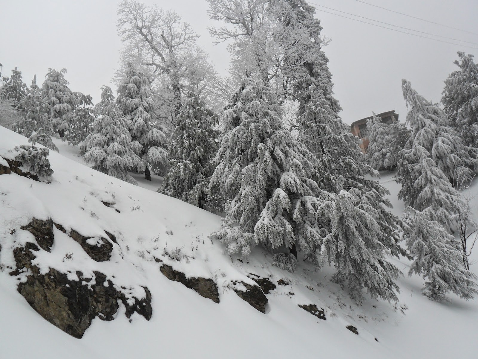 Wallpapers Of Snow Fall Hd Wallpapers Tourist Places Of Pakistan Hd Wallpapers