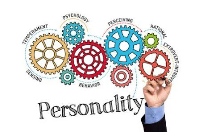 Successful personality traits