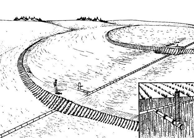 Agricultura Y Ecologia Terrazas