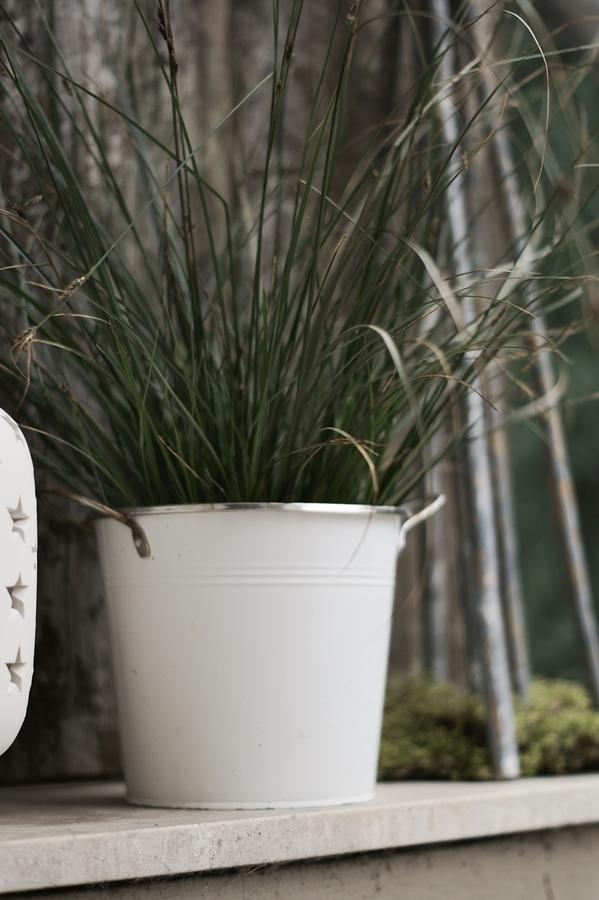 Blog + Fotografie by it's me! - Hauseingang im Februar - weißer Metallübertopf mit Gras bepflanzt