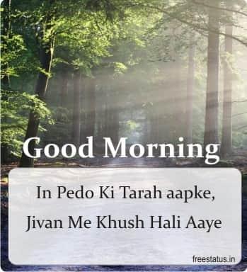 Best-15-Good-Morning-Images-Hindi-New