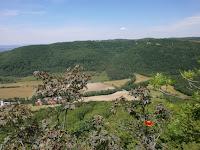 Drackenberg - eine Kernzone des Biosphärengebiets Schwäbische Alb