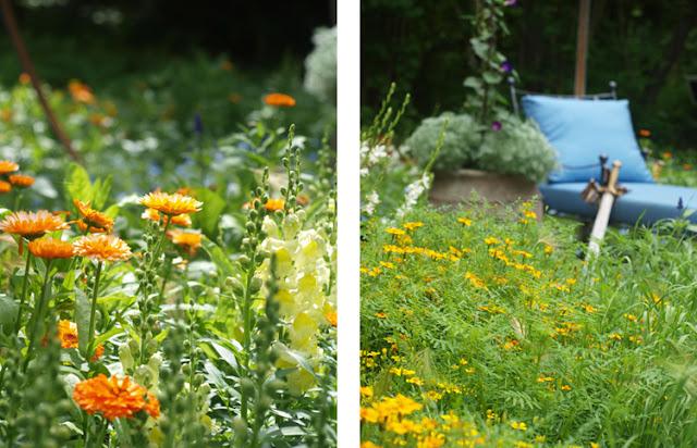 Havekonkurrence på Sollinden 2015 med kongelig plads i solen