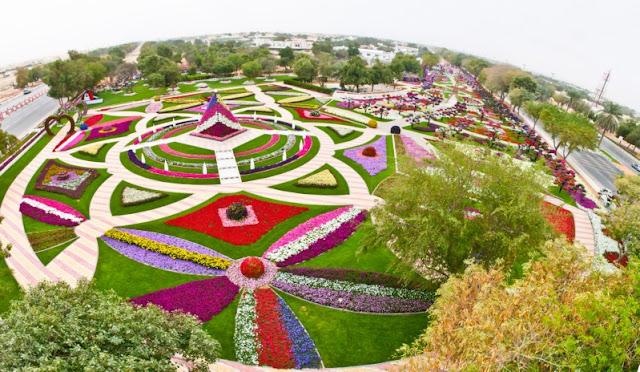 Εντυπωσιακές φωτογραφίες από το μεγαλύτερο ανθοκομικό πάρκο του κόσμου στα Ηνωμένα Αραβικά Εμιράτα.