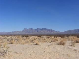View from the Dunes at Mojave National Preserve