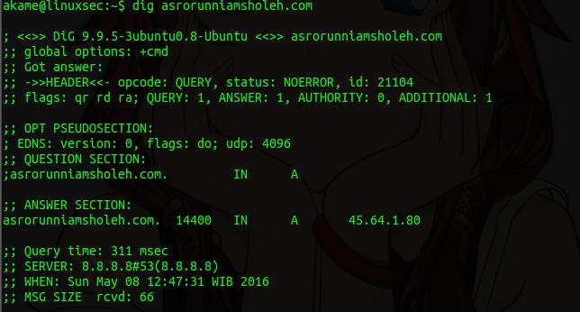 Hack Targeted Website Using Reverse Ip