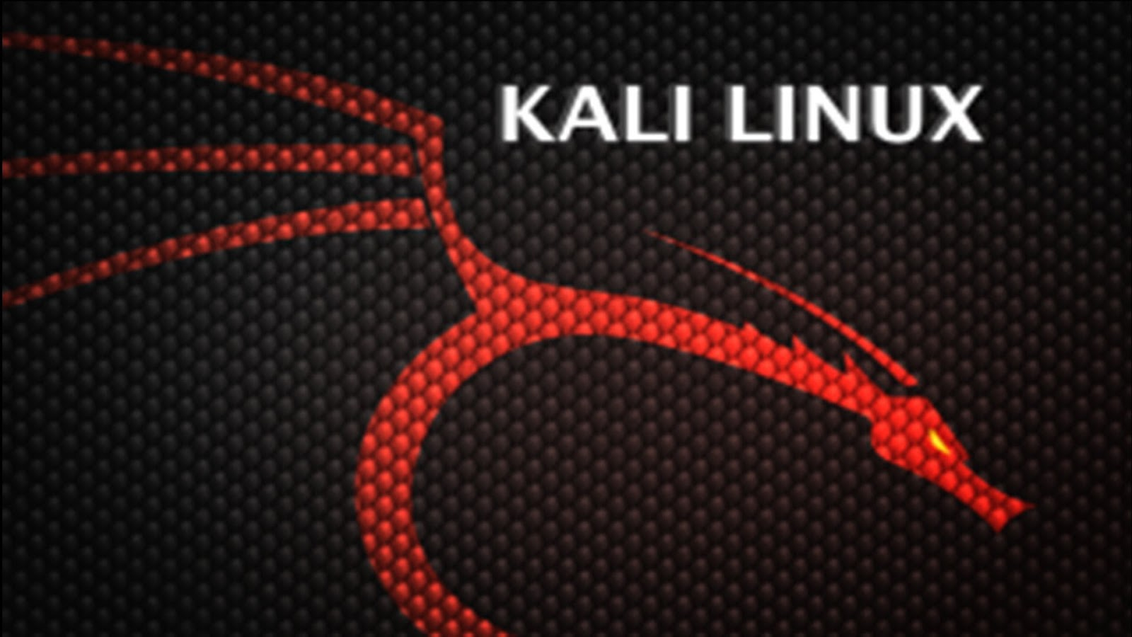 Instil Developers: How to install XDM Downloader on Kali Linux