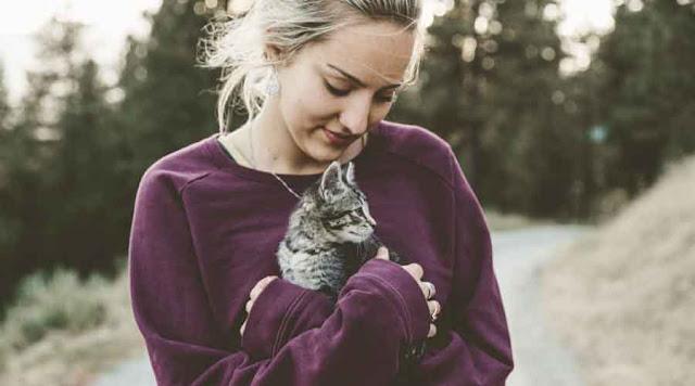4 Manfaat Memelihara Kucing Bagi Manusia Yang Wajib Kamu Ketahui