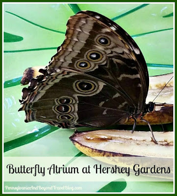 The Butterfly Atrium at Hershey Gardens in Pennsylvania