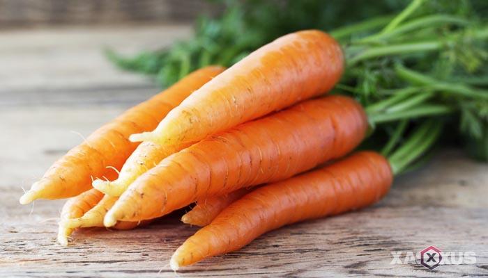 Fakta 1 - Ukuran janin 21 minggu sebesar wortel