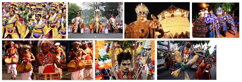Festivals & tour operator in Sri lanka