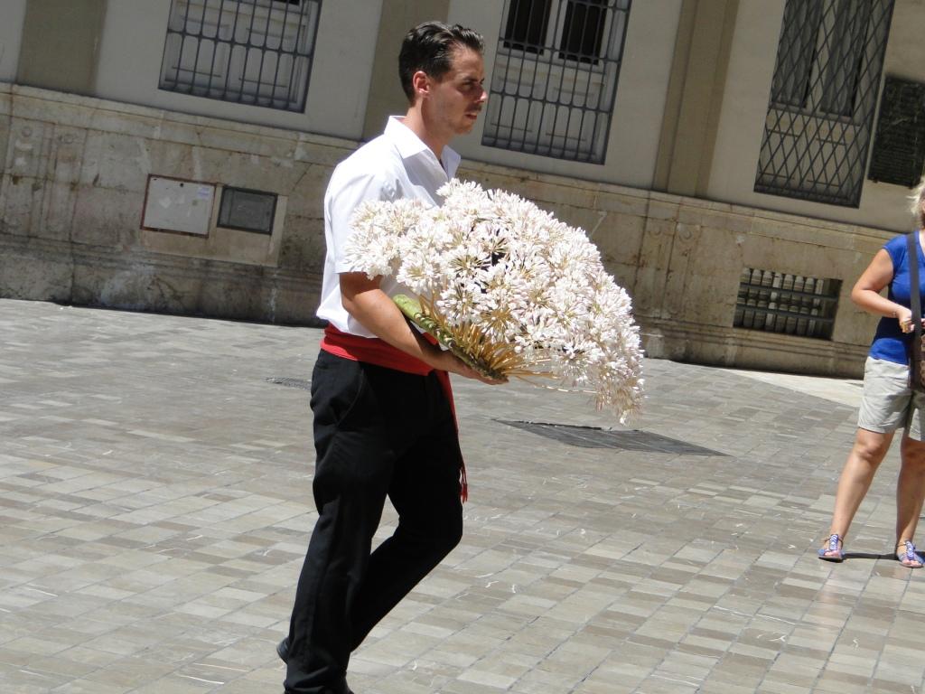 Biznaga The Traditional Malaga 180 S Flower