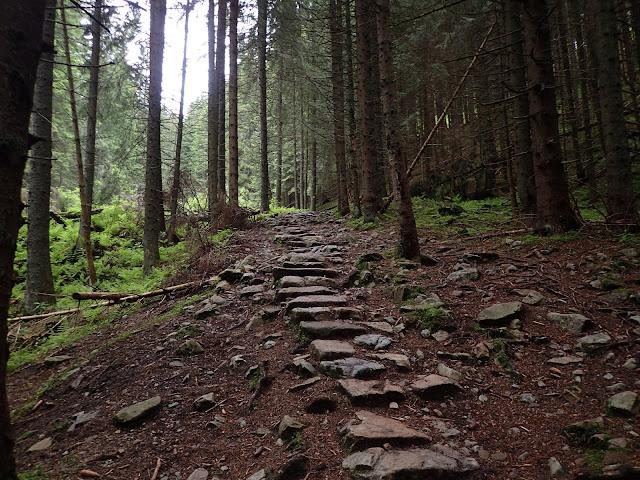 Gdzieś w połowie (?) ścieżki na Iwaniacką Przełęcz