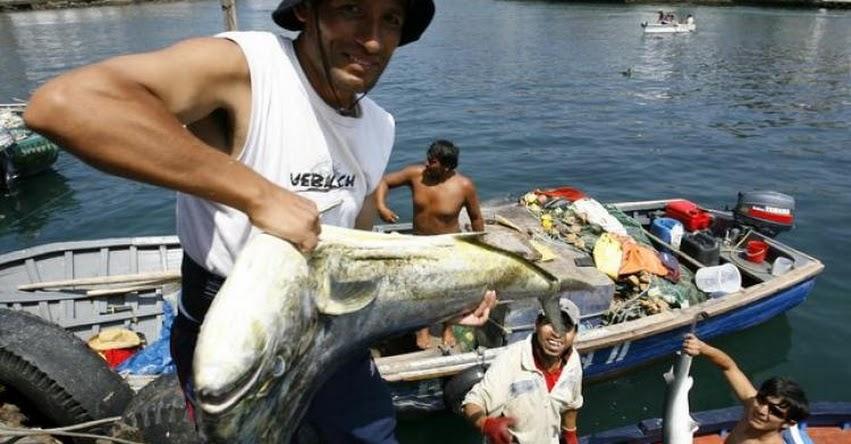 SINEACE: Más de 76 mil pescadores artesanales podrán certificarse como extensionistas pesqueros - www.sineace.gob.pe