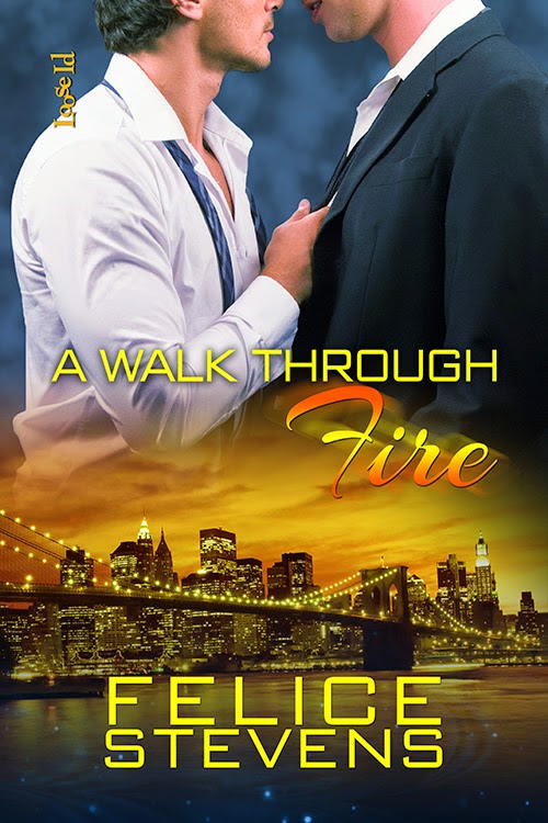 A Walk Through Fire by Felice Stevens: Review Playlist Excerpt Tour @felicestevens1
