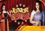Junior Senior 19-02-2017 ZeeTamil Tv Show