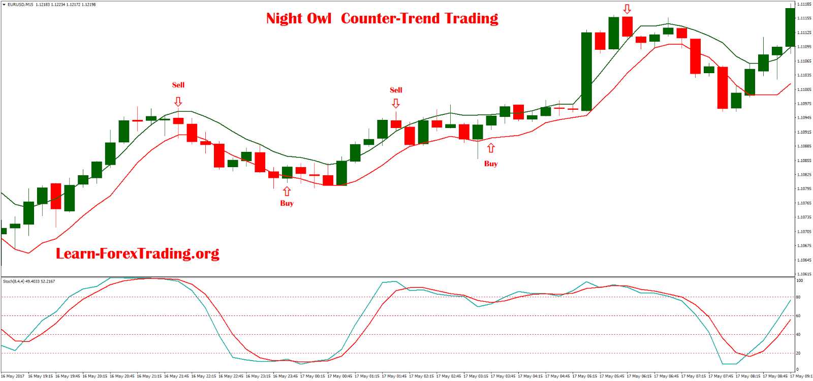 Forex night owl