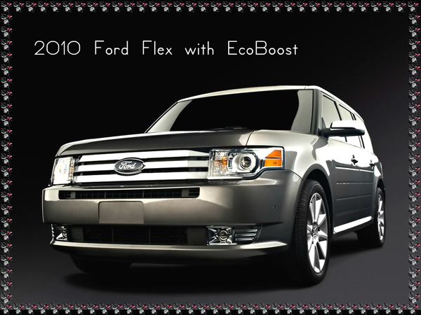 2010 ford mustang 2010 ford flex with ecoboost. Black Bedroom Furniture Sets. Home Design Ideas