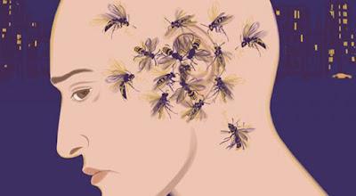 Nyamuk Menyukai Karbondioksida HIT Obat Nyamuk, Aman Bagi Keluarga