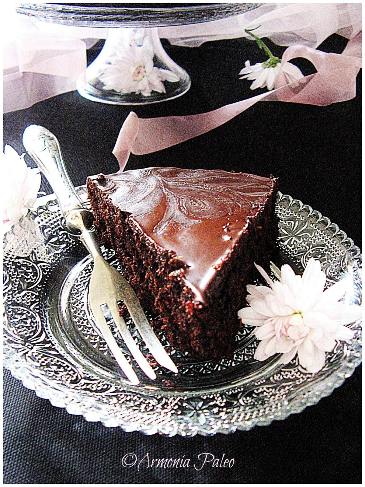 Torta al Cocco e Cioccolato di Armonia Paleo
