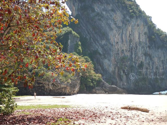 Trang,Haadyao