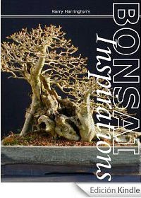 Harry Harrington's Bonsai Inspirations 1