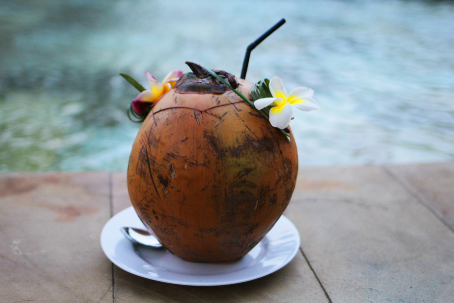 travel coconut bali review