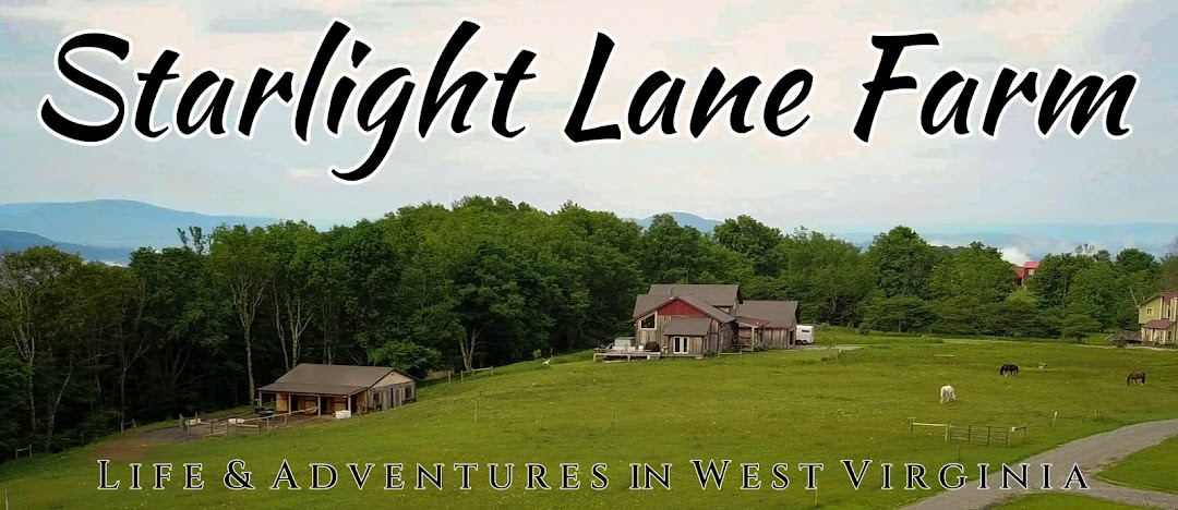 Starlight Lane Farm