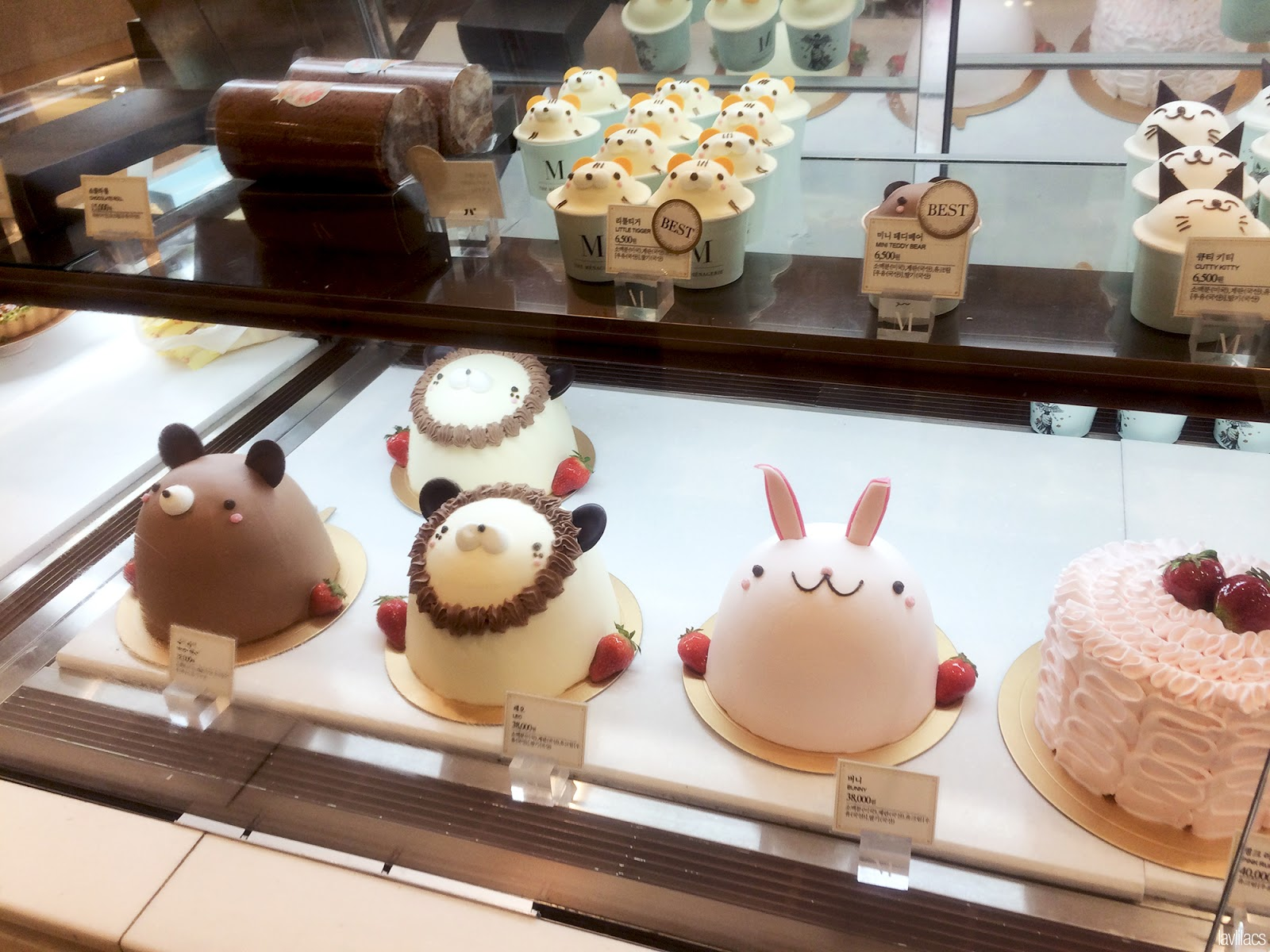 Seoul, Korea - Summer Study Abroad 2014 - Shinsegae Gangnam - Food court cute animal cakes