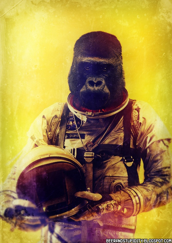 Boredom Crusher: Astronaut Animals... And One Samurai ...