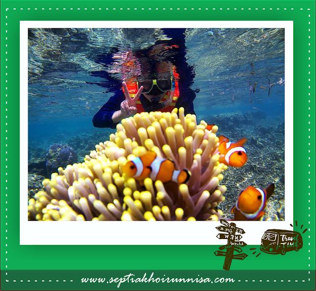 Teman-teman Blogger pun pada happy bisa main dengan ikan nemo