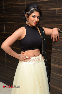 Actress Kruthika Pictures at Rojulu Marayi Movie Audio Release Function  0050