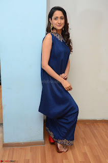 Pragya Jaiswal in beautiful Blue Gown Spicy Latest Pics February 2017 025.JPG