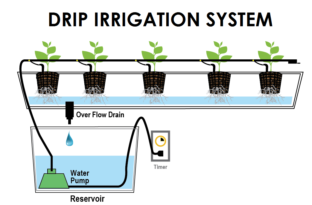 Step By How To Install A Drip Irrigation System World Agriculture