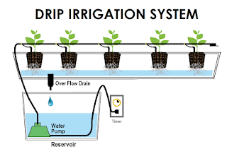 Drip Irrigation System