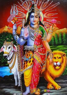 Shivan'ın yarı dişi yarı erkek formu.