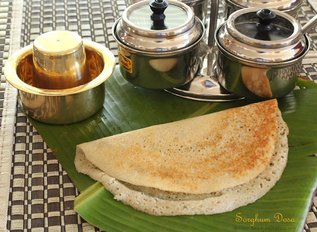 images of Sorghum Dosa / Jowar Dosa Recipe / Cholam Dosai Recipe - Millet Recipes