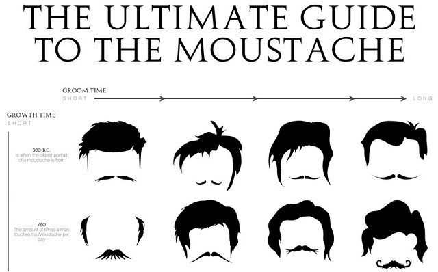 The Ultimate Guide to The Moustache #infographic ~ Visualistan