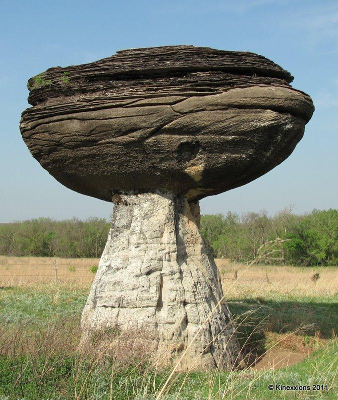 2011-0508-03-mushroom-rock.jpg