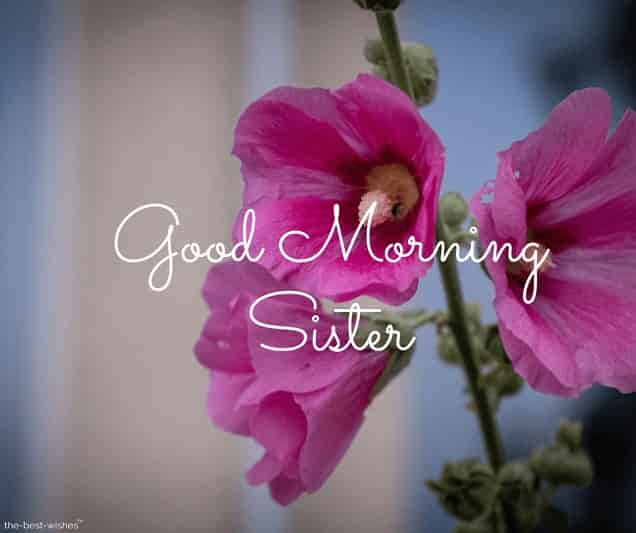 good morning to sister