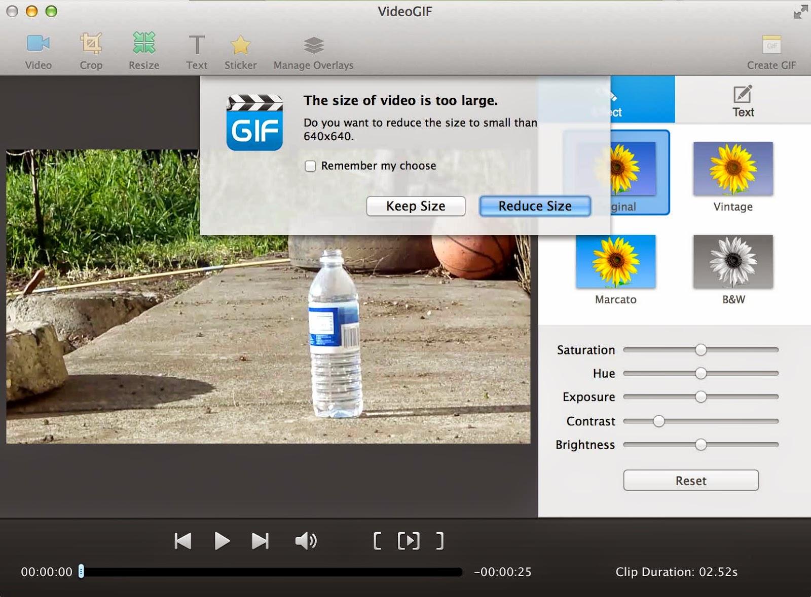 videogif video size