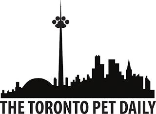Dog Walking Services Danforth