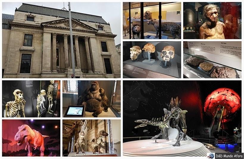 Museu de História Natural - Diário de Bordo - 5 dias em Londres