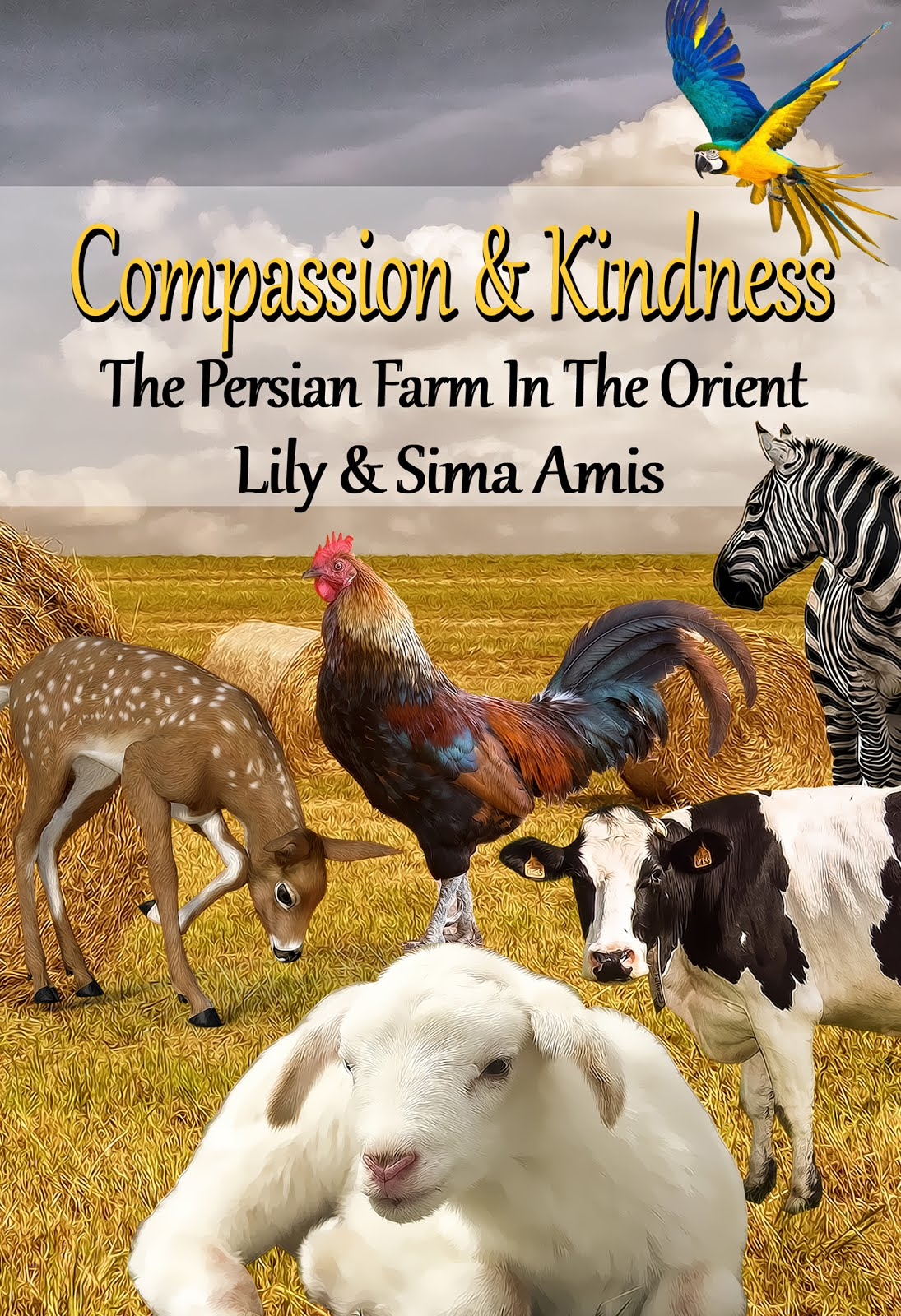 COMPASSION & KINDNESS