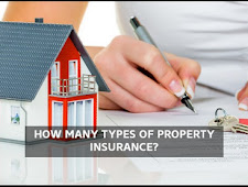 How many types of insurance