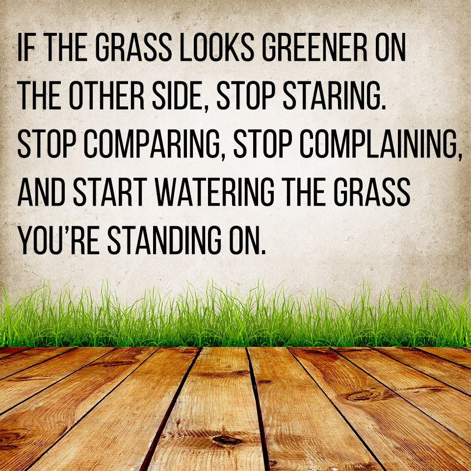 song grass is always greener